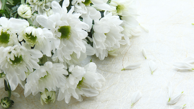 Chandler Funeral Homes & Crematory - Obituaries